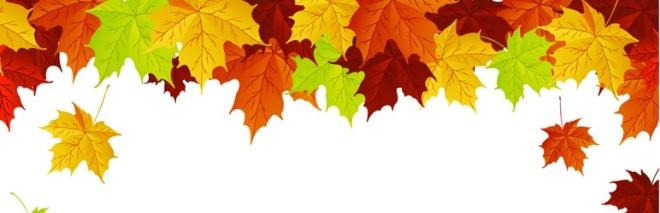 leavesbanner
